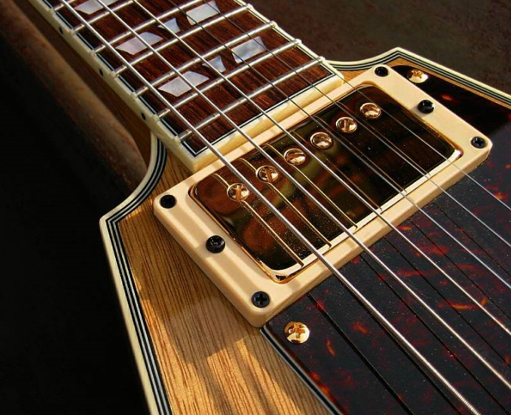 vector-maximus-pickup-and-pickguard-1