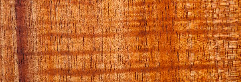 Koa Tone Wood Sample